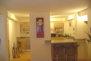 kitchen equipped for short or long term let in city